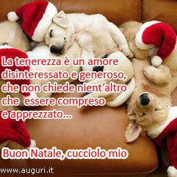 Buon Natale Cucciolo Mio