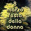 Festa della donna con mimose