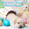 Una dolce Pasqua per te